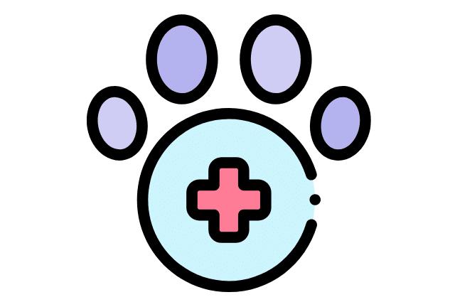 perro en el vet