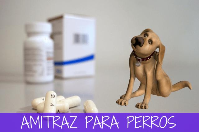 amitraz para perros