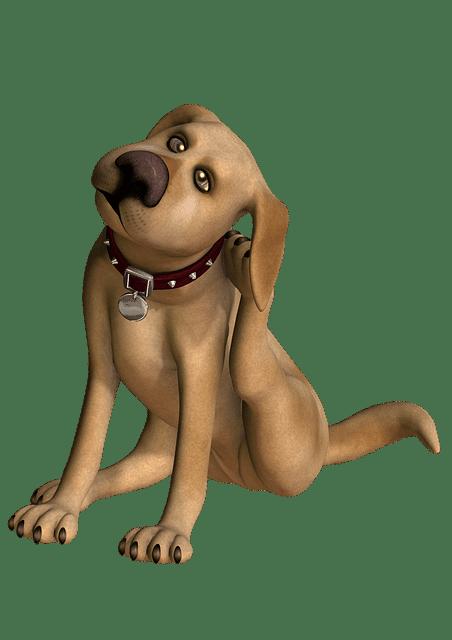 dosis de amitraz en perros
