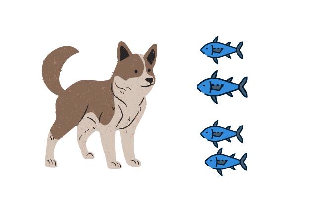 los perros pueden comer atún enlatado