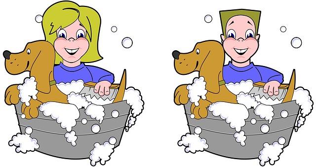 baño para perro antipulgas