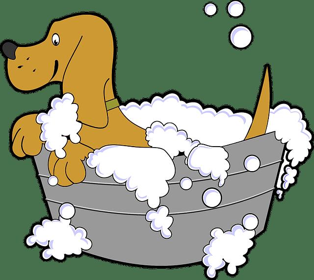 baño para perro medicado
